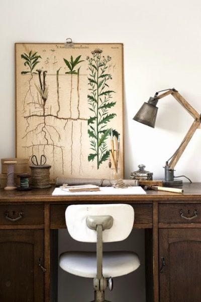 bureau-vintage-industriel-poster-botanique